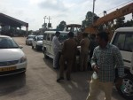 RTO Officials Seized 104 Airport Taxis operated by Aggregators