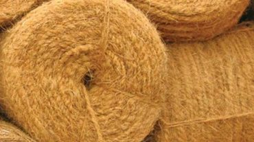 30 Outlets Set Up For Popularizing Coir Products