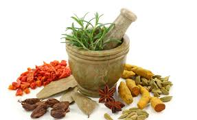 Steps taken to encourage the use of Ayurveda at the international level