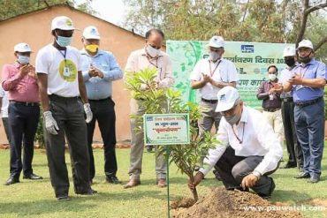 NHPC celebrates 'World Environment Day 2020'
