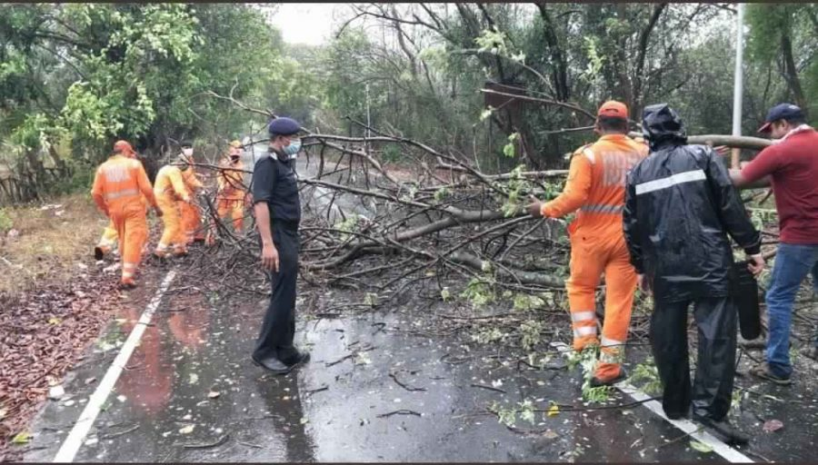 Cyclone Nisarga crosses Maharashtra coast in the afternoon Mumbai witnesses tree fallings but spared of serious damage