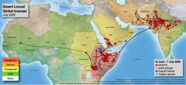 Locust control operations have been done in 3,83,631 hectares area of Rajasthan, Madhya Pradesh, Punjab, Gujarat, Uttar Pradesh, Maharashtra, Chhattisgarh, Haryana, Uttarakhand and Bihar till 21st July 2020