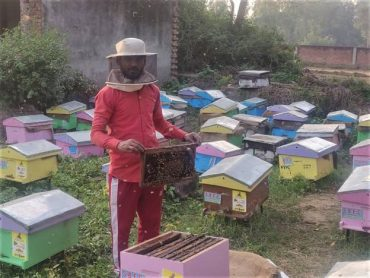 KVIC's Honey Mission Earns First Income for Migrant Workers; Higher Yield Awaited in Coming Months