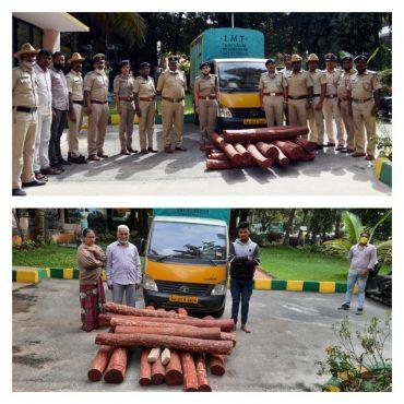Trio held,Red Sanders smuggling racket busted by RT Nagar police,Red Sanders logs weighing 502kg seized: