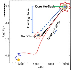 Anomalously large abundance of lithium in low mass red giants traced to He-flashing phase of 2 million years