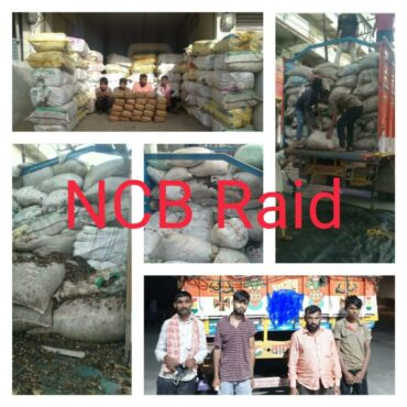 Four Held,Major haul of drug racket busted by NCB: More than 2000 kg ganja seized in Hyderabad Worth around Rs.15 Crore