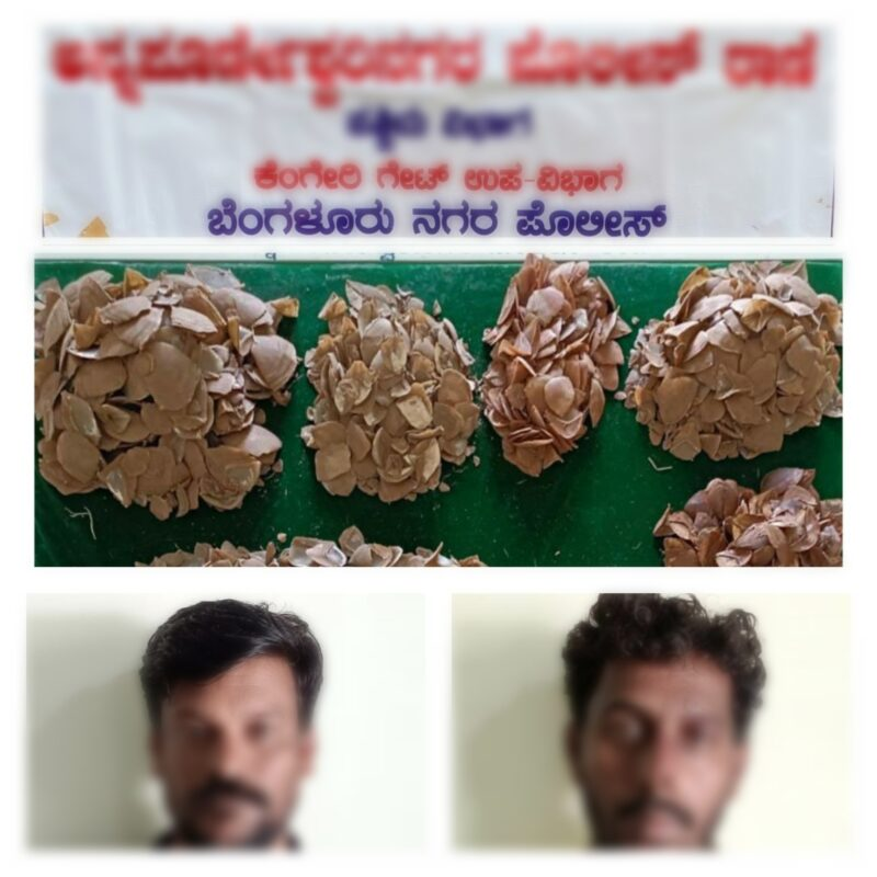 Two poachers held,8.2 kgs of Pangolin Shells Seized by Annapoorneshwari Nagar police